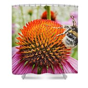 Bee And Pink Flower Shower Curtain