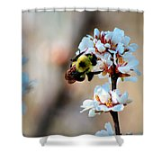 Bee Blossom Shower Curtain