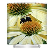 Bee Buzzer Shower Curtain