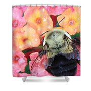 Bee Card Shower Curtain