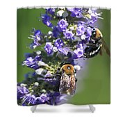 Bee Cause Shower Curtain