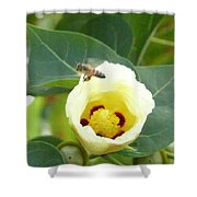 Bee Chowtime Shower Curtain