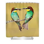 Bee-eater Valentine Heart Shower Curtain