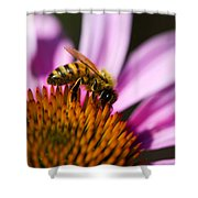 Bee Feasting Shower Curtain