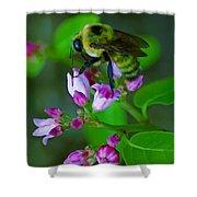 Bee Good 2 Shower Curtain