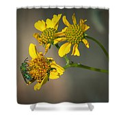 Bee Happy Shower Curtain
