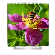 Bee Here Now Shower Curtain