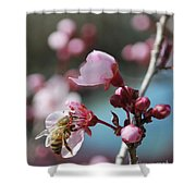 Bee In A Blossom Shower Curtain