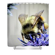 Bee In A Bubble Shower Curtain
