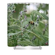 Bee In Flight Shower Curtain