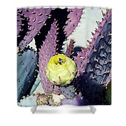 Bee In The Cactus Flower  Shower Curtain