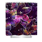 Bee Insect Close Macro Flower  Shower Curtain