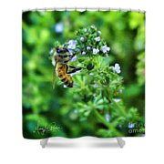 Bee Is In The Oregano Shower Curtain