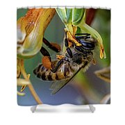 Bee Life Shower Curtain