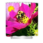 Bee-line 3 Shower Curtain