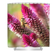 Bee Lunch Shower Curtain