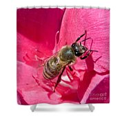 Bee Mine Shower Curtain