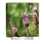 Bee On A Thistle Flower Shower Curtain