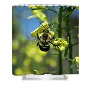 Bee On Broccoli Flower Shower Curtain