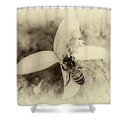 Bee On Citrus Flower Shower Curtain