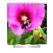 Bee On Edge Of A Hibiscus Flower Shower Curtain