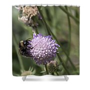 Bee On Flower 5. Shower Curtain