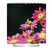 Bee On Flower Spring Scene Shower Curtain