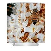 Bee On Flowers 2 Shower Curtain