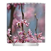 Bee On Pink Bloom Shower Curtain