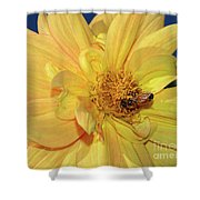 Bee On Pretty Dahlia By Kaye Menner Shower Curtain