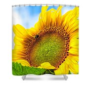 Bee On Sunflower Shower Curtain