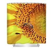 Bee On Sunflower Summer Nature Scene Shower Curtain