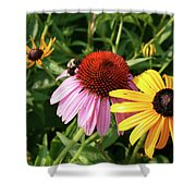Bee On The Cone Flower Shower Curtain