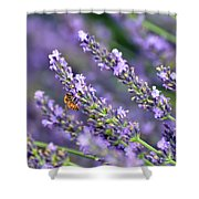 Bee On The Lavender Shower Curtain