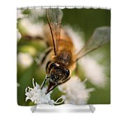 Bee On White Vertical Shower Curtain