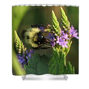 Bee On Wildflower Shower Curtain