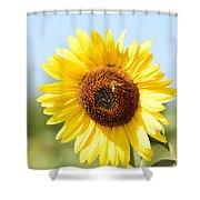Bee On Yellow Sunflower Shower Curtain