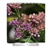 Bee Paradise Shower Curtain