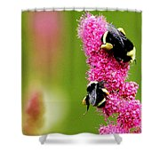 Bee Pink Shower Curtain