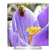 Bee Pollen Shower Curtain