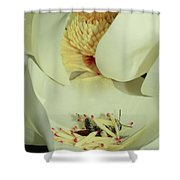 Bee Pollen Overdose Shower Curtain by Deborah Benoit