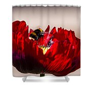 Bee Right Back With Red Flower Shower Curtain