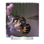 Bee Sipping Nectar Shower Curtain