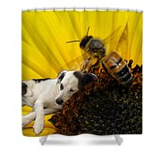 Bee With Dog Shower Curtain