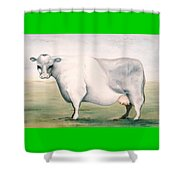 Beef Holocaust I Shower Curtain