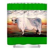 Beef Holocaust II Shower Curtain