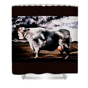 Beef Holocaust Iv Shower Curtain