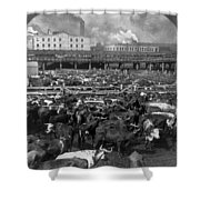 Beef Industry, C1903 Shower Curtain