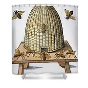 Beehive, 1658 Shower Curtain