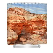 Beehives Above Wash 3 In Valley Of Fire Shower Curtain